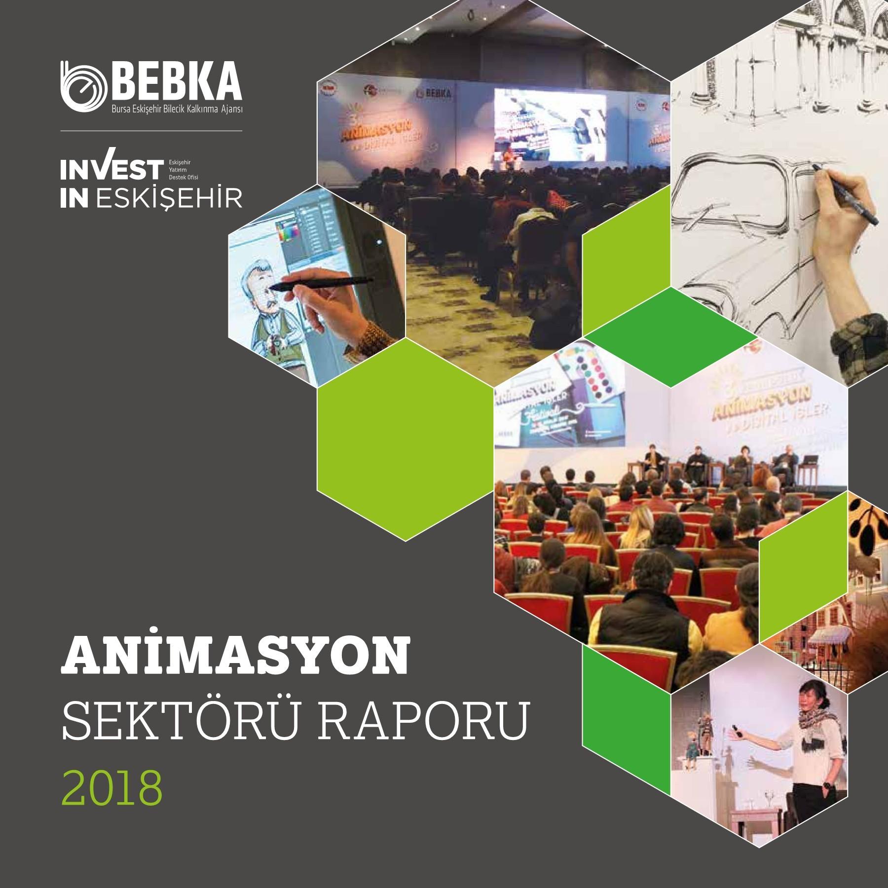 2018 Animasyon Sektörü Raporu