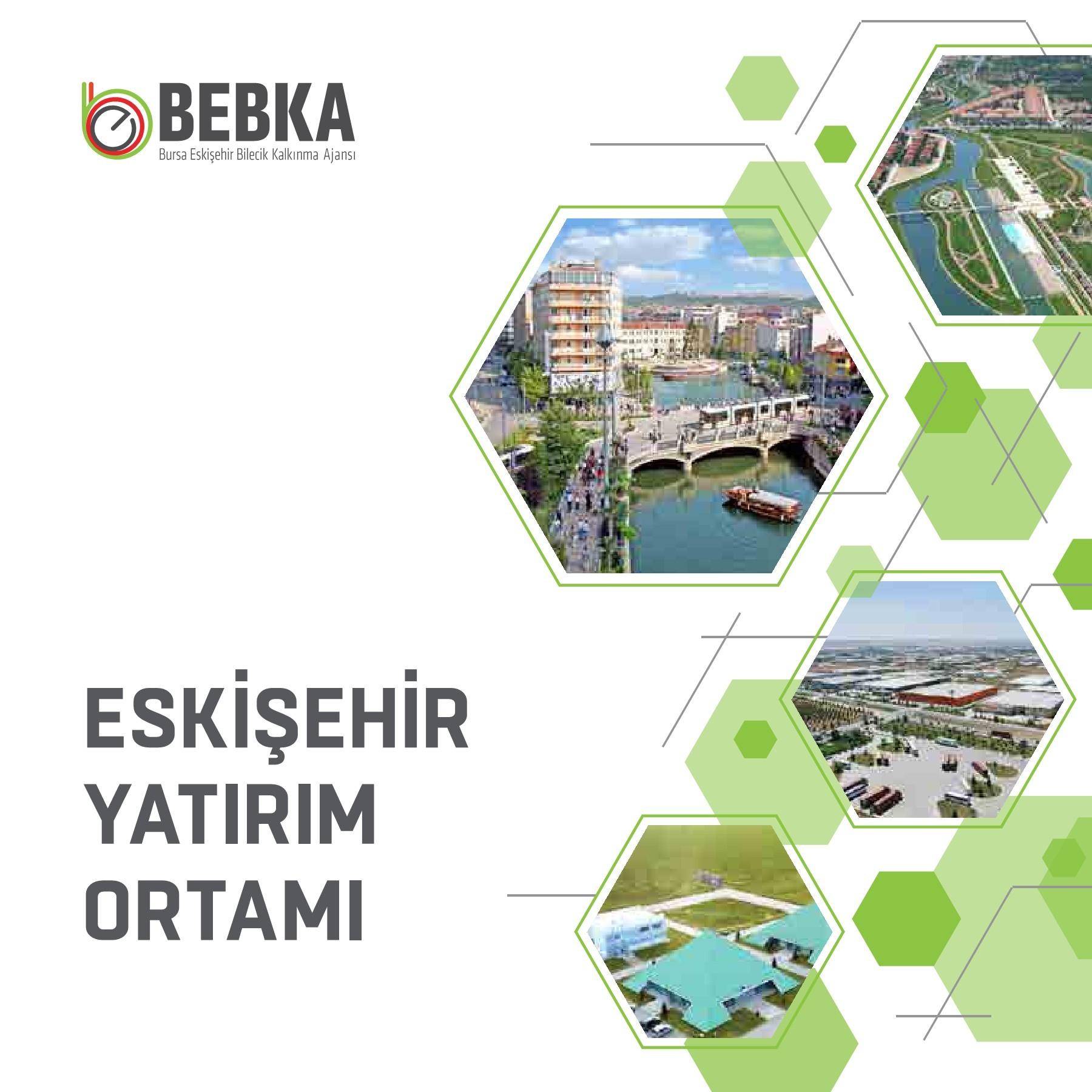 2017 Eskişehir Yatırım Ortamı