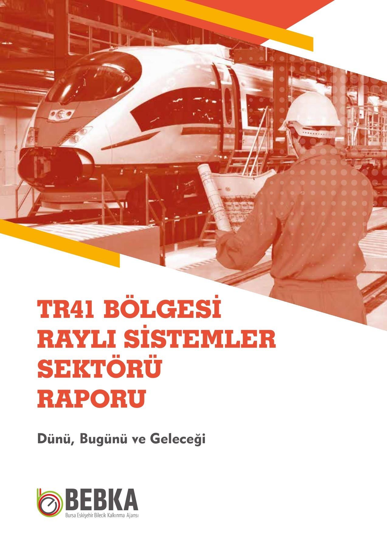 TR41 Bölgesi Raylı Sistemler Sektörü Raporu