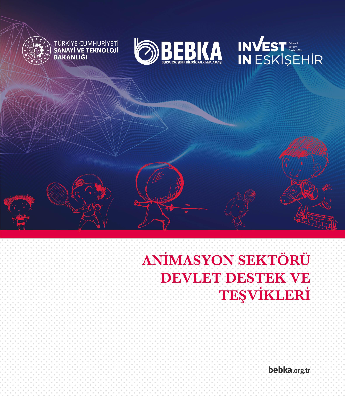 Animasyon Sektörü Devlet Destek ve Teşvikleri